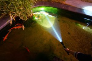 GHS SC Waterproof Torchlight